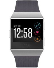Fitbit Ionic Silver Gray/Blue Gray One Size (FB503WTGY)